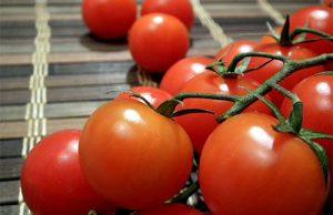 conserve-di-pomodori