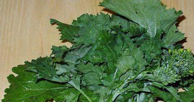 Friarielli non broccoli un eccellenza tutta napoletana