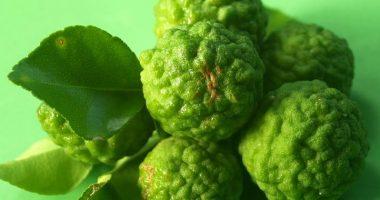 Bergamotto ecco le qualita di questo frutto poco conosciuto